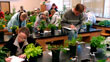 Plant Biology: Diverse opportunities for study